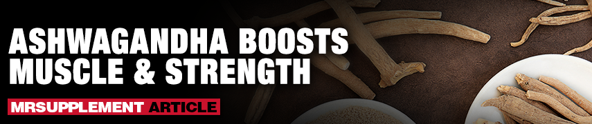 Ashwagandha Boosts Muscle And Stength - MrSupplement Article