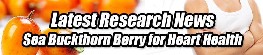 sea buckthorn weight loss results