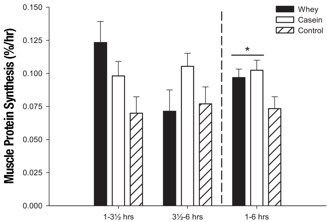 Muscle Protein Synthesis in Whey vs Calcium Caseinate