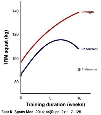 Strength-gains-in-strength-vs-concurrent-vs-endurance-groups