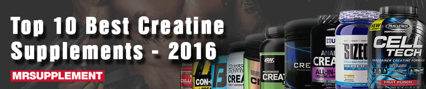Top 10 Best Creatine Supplements - 2016