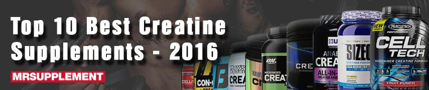 Top 10 Best Creatine Supplements - 2016