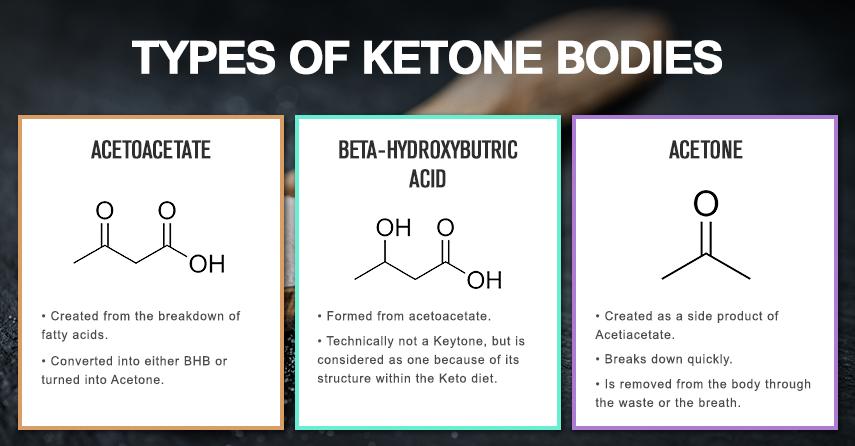Best Ketogenic Diet Blogs | KetogenicDietPDF.Com