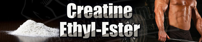how to take creatine ethyl ester