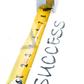 Goals for Strength Gains