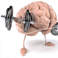 The Bodybuilding Mind