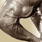 Glutamine & Leucine for Muscle Growth