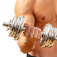 WPH Increases Muscle Cell Regeneration Follow Eccentric Exerci