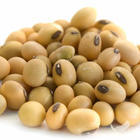 Latest Research - Boost Recovery & Fat Loss With Soy Protein