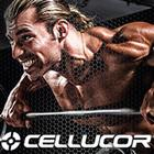 Cellucor COR Crunch Bar Review