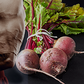 Beetroot Boosts Strength Training Capacity