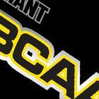 Giant Sports Giant BCAA Review