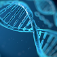 Genes for Fitness– The Future of Training & Sports Nutrition