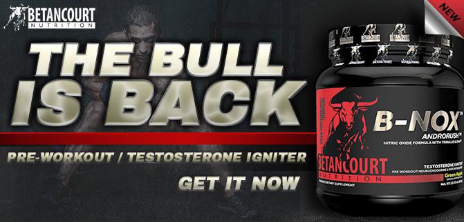 The Bull Is Back- B-Nox