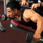 Dumbbell Rear Lateral Raise - Phase 4