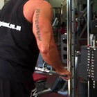 Tricep Press Down (Straight Bar)